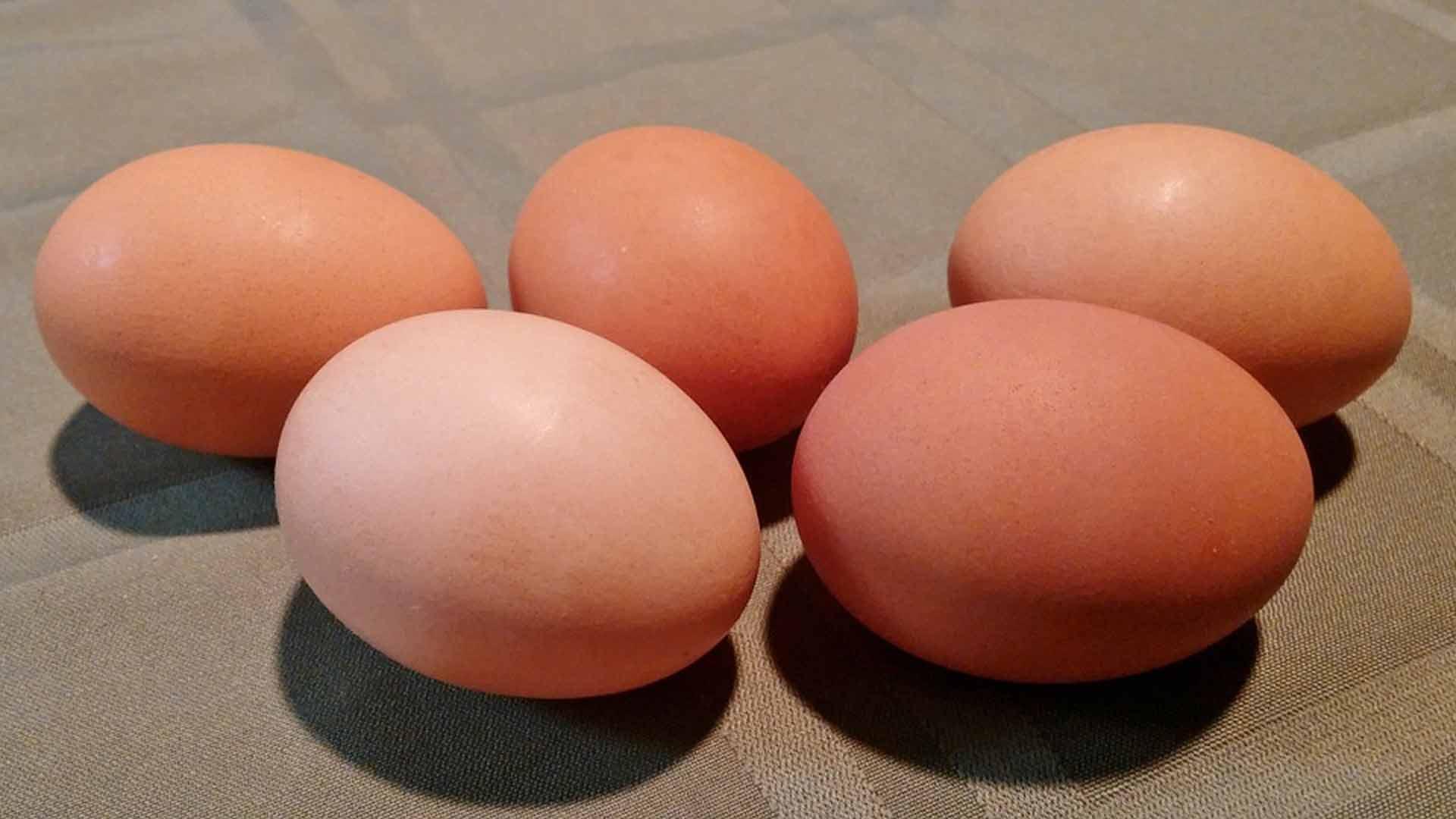 por-que-comer-huevo-todos-los-dias-1920
