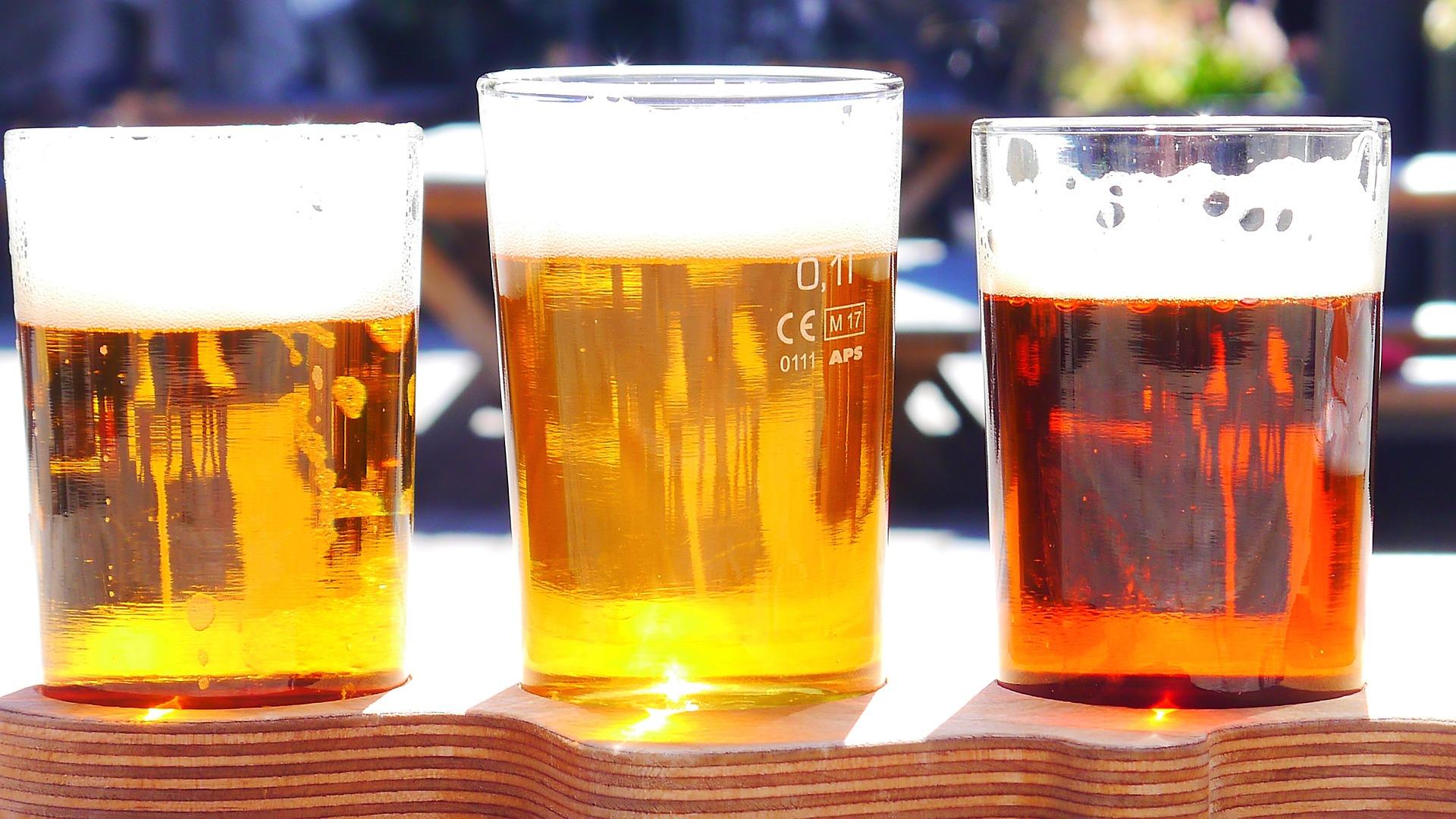 el-lupulo-espanol-es-el-mas-utilizado-en-europa-para-elaborar-cerveza-1920