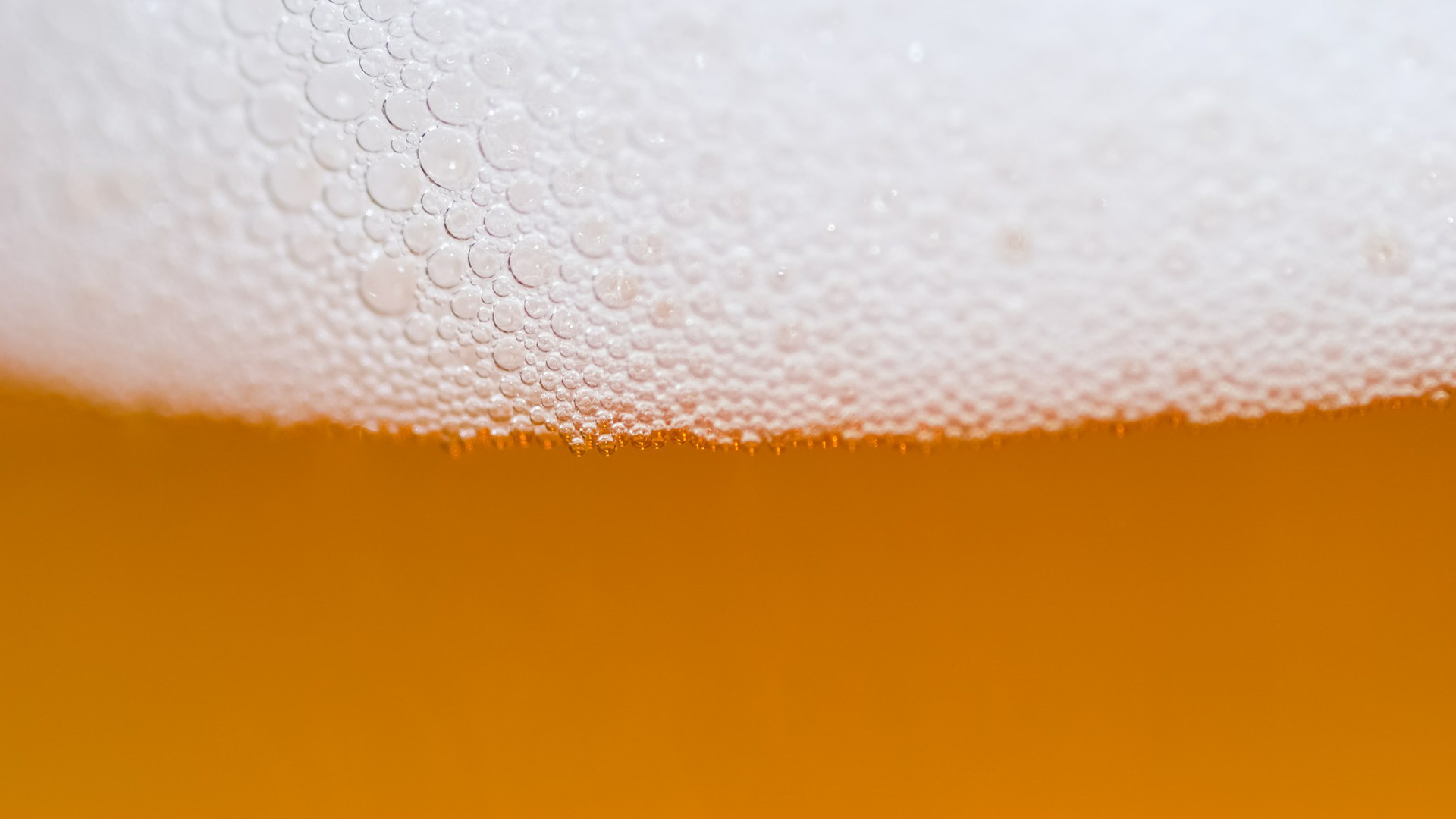 el-primer-balneario-de-cerveza-en-espana-esta-en-granada-1920