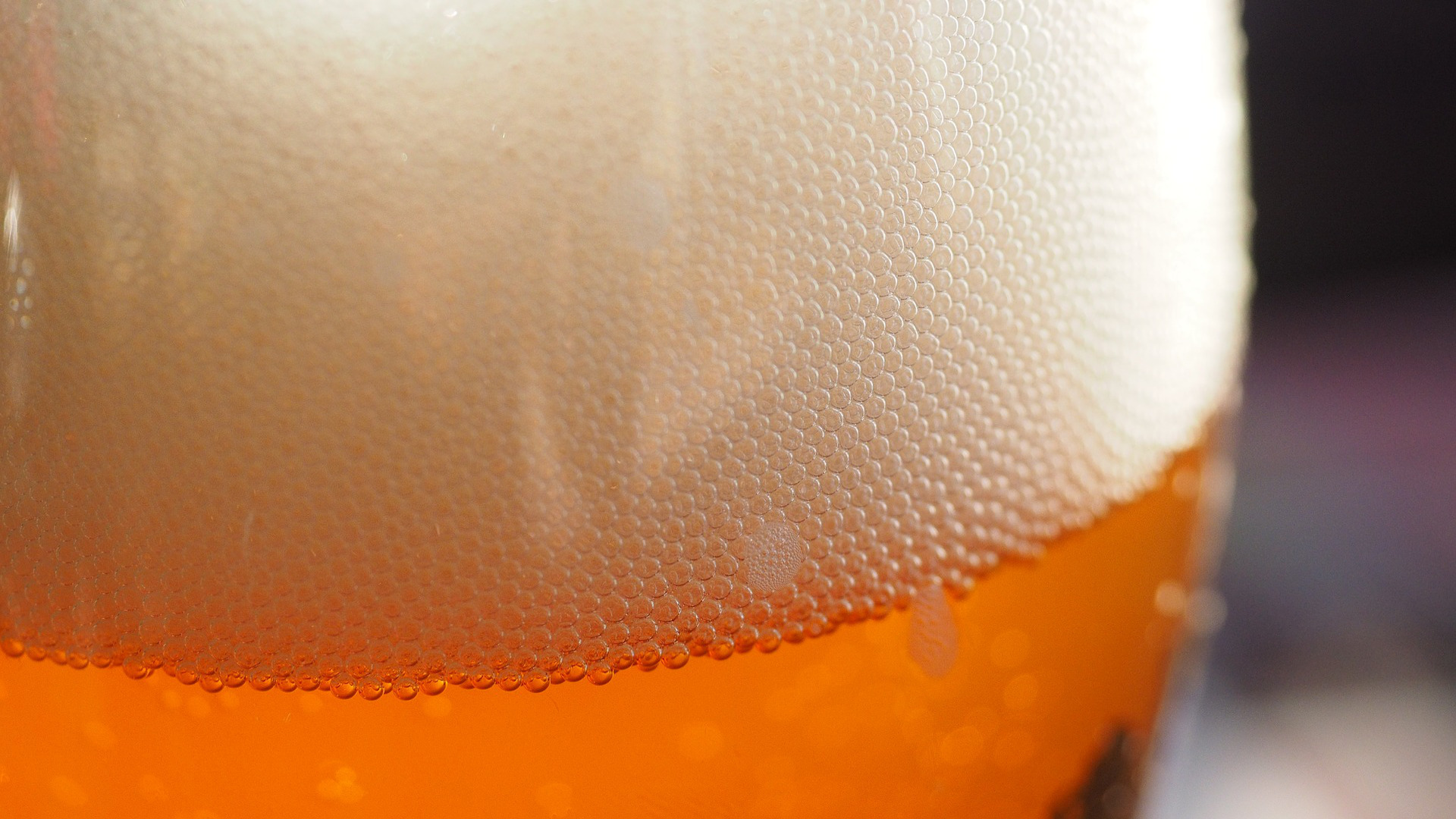 puede-la-cerveza-ayudar-a-reducir-el-colesterol-y-bajar-de-peso-1920
